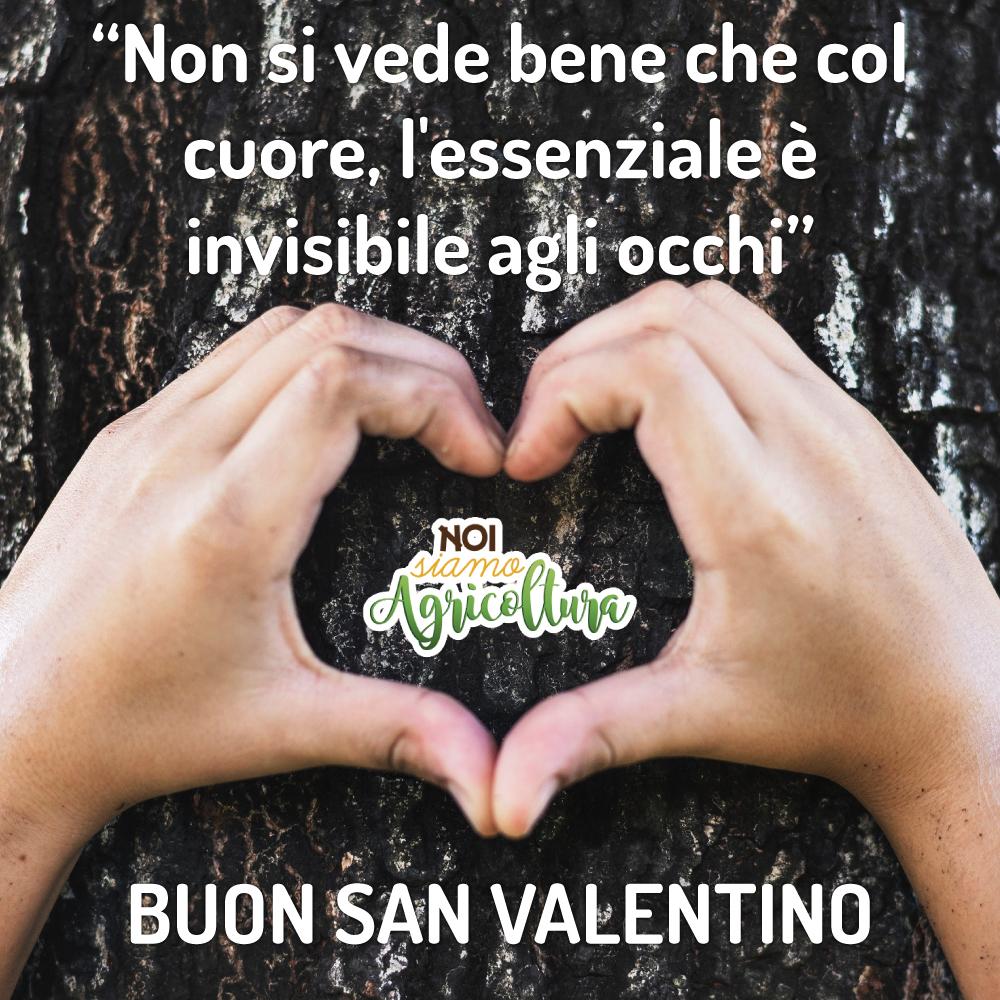 san-valentino-nsa-2